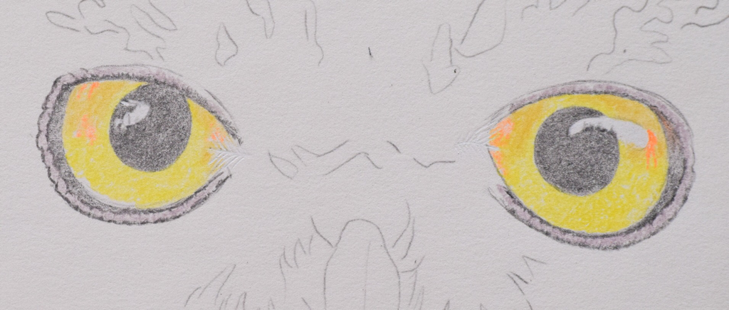 Picture showing step 1 of how to draw owl eyes using colored pencils.