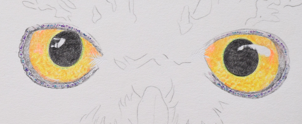 Picture showing step 2 of how to draw owl eyes with coloured pencil.