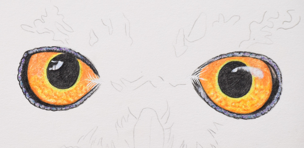 Picture showing step 3 of how to draw owl eyes with colored pencil.