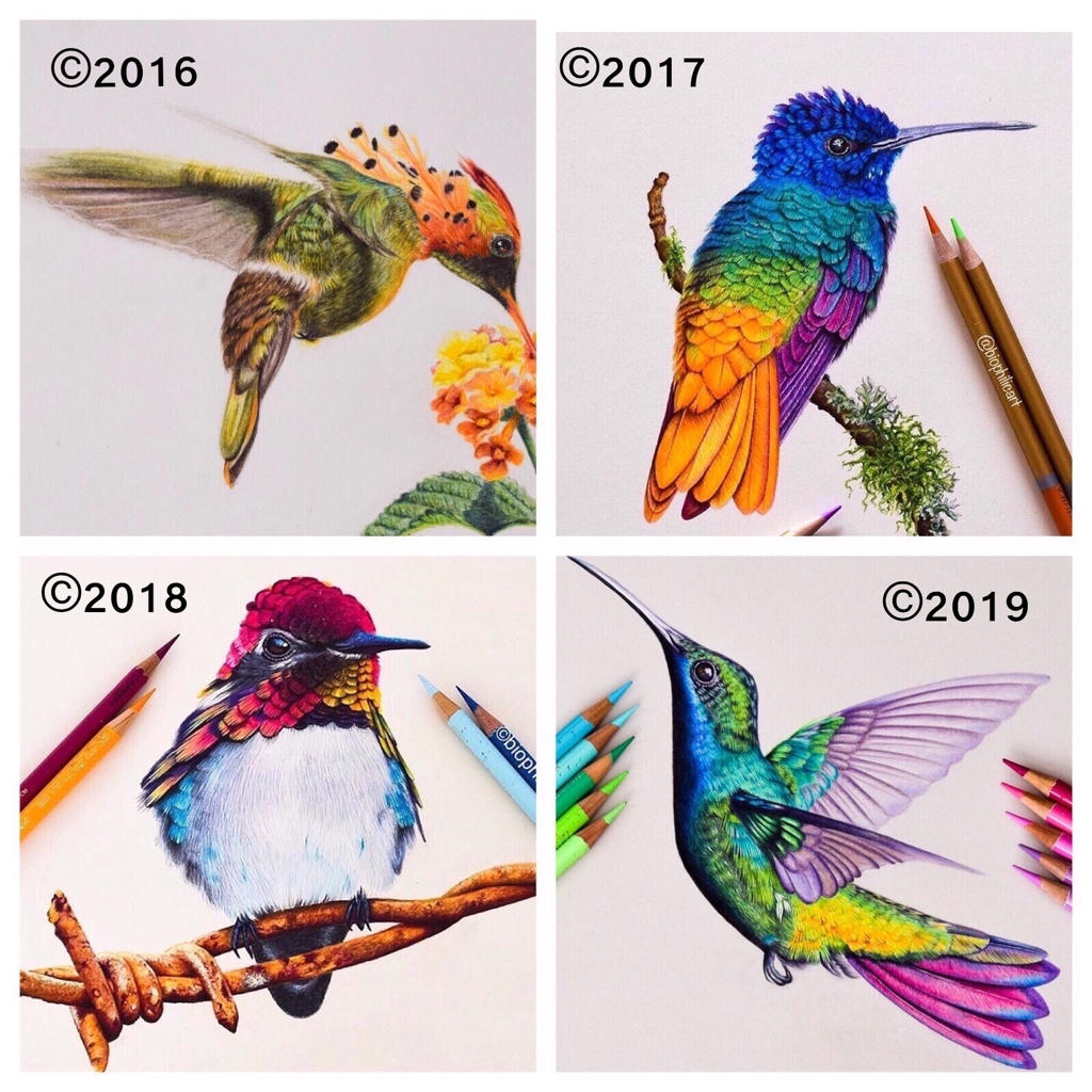 Picture showing hummingbirds drawn over three years comparing the difference between the drawings colored pencil
