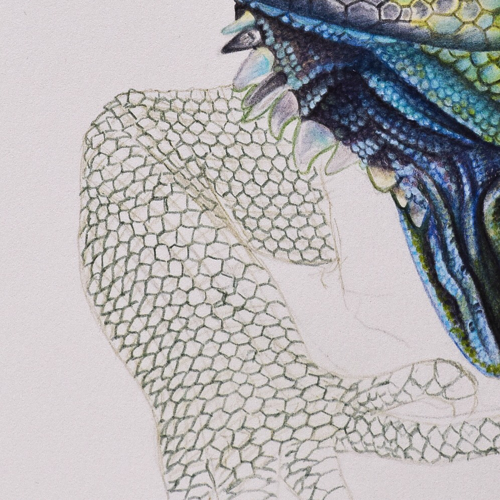 Picture showing step 2 of my tutorial on drawing lizard skin using color pencils.
